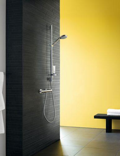 Bathwaters Hansgrohe 13116000 hansgrohe Ecostat92140